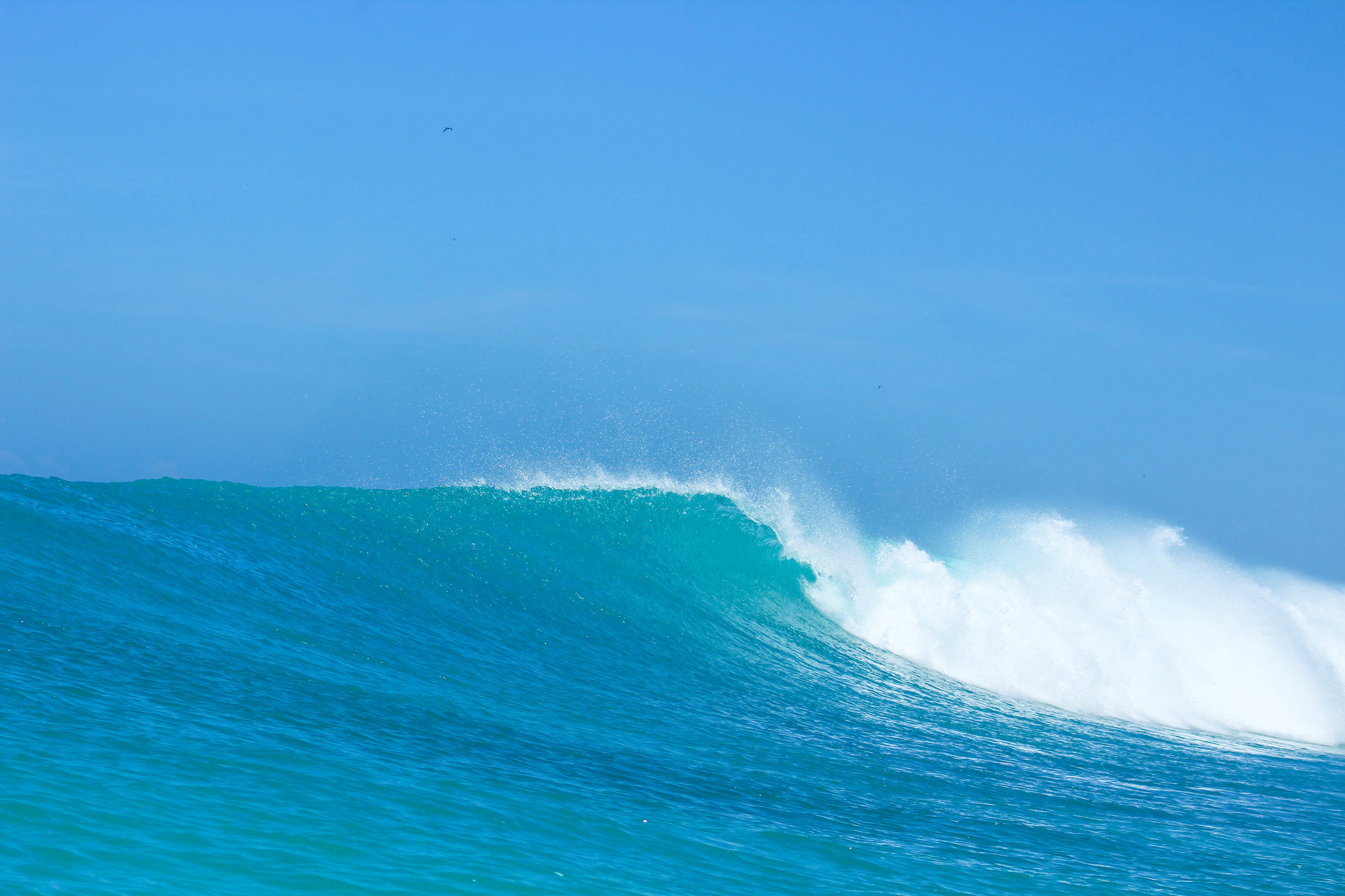 Aqua blue and ready to be surfed.