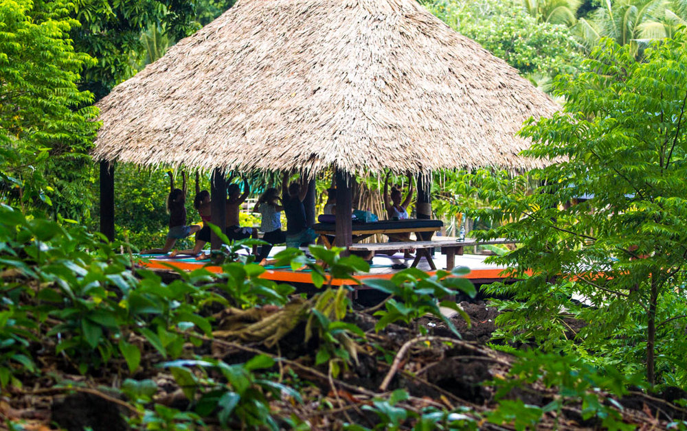 Jungle yoga.