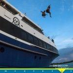 RM_jump_surfline