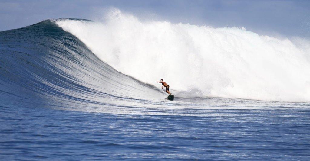 Telo_Island_Lodge_Dingo_Surf_Guide