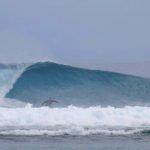 Aganoa_Lodge_Samoa_Stu_Surf_Left