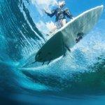 Pinnacles_Lodge_Matt_Surf