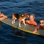 Pinnacles_Lodge_Katy_Dre_Karyn_Tony_Surf