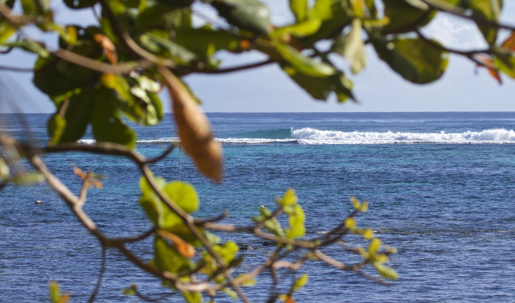 Aganoa_Lodge_Surf_Pastor_Point