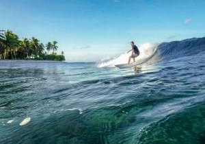 Fanning-Left-long-playful-and-ridable-from-2ft-to-12ft